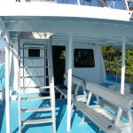 Under cover rear deck on Whale watcher